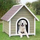 En Ucuz Köpek Kulübesi
