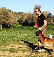 Esenler Köpek Eğitimi