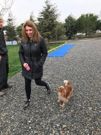 Anadolu Yakası Köpek Eğitimi